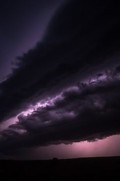Godzilla by Nicolaus Wegner
