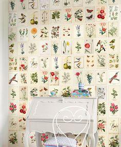 Esprit botanique on pinterest - Papier peint oiseaux ...