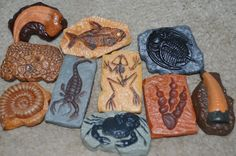 awesome fossils for birthday party or fossil classroom lesson