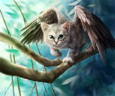 Фото Котенок с крыльями идет по ветке дерева