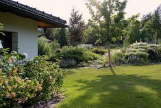 Zahrada zvlněná   Atelier Flera Boxwood Garden, Sidewalk, Plants, Outdoor, Instagram, Garden Ideas, Gardening, Atelier, Lawn And Garden