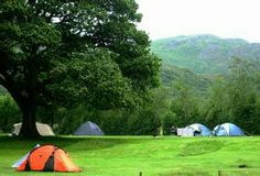 Fisherground Farm Camping - rave reviews - allows campfires - adventure playground and pond for playing