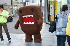 Domo goes for a walk