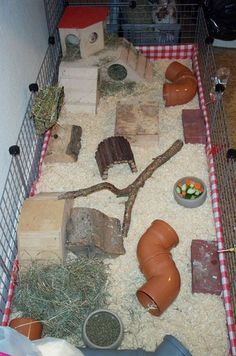 I think this is a table cloth covering the coroplast. Neat idea. #HamsterTips. Wow what a nice ample space for your hamster to run and have fun in.
