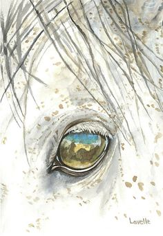 Through His Eyes by Kimberly Lavelle