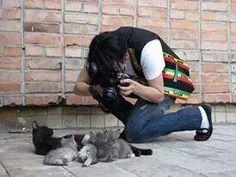 Michael Jackson flat cat photo shoot.