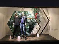 Image result for tropical window displays