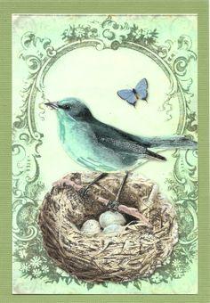 Nest birds, vintage