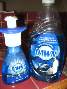 How To Make Your Own Foaming Dish or Hand Soap and Save Big Bucks!!