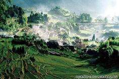 """Zhejiang: Yunhe Rice Terrace (浙江云和梯田) Literally meaning """"peaceful clouds,"""" Yunhe and its surrounding rice terraces have been home to farmers for at least 1,000 years."""