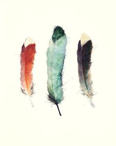 Feathers Art Print by Amy Hamilton | Society6 - Neeed ♥ - Shop is all you Neeed !