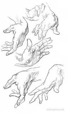 george bridgman, constructive anatomy online, anatomy lessons online