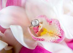 Wedding Ring © 2012 Willa Kveta Photography