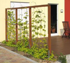 vertical garden Spannseile fr Hopfen i - Potager Garden, Garden Trellis, Backyard Projects, Garden Projects, Herb Garden Design, Vertical Gardens, Garden Structures, Plant Design, Succulents Garden