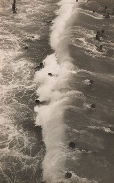 An image of Sydney surfing by Harold Cazneaux