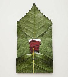 organic envelope