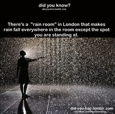 Control the weather in the Rain Room at the Curve, Barbican Centre, London