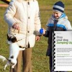 Stop your dog jumping up with behaviourist and dog trainer Karen Wild