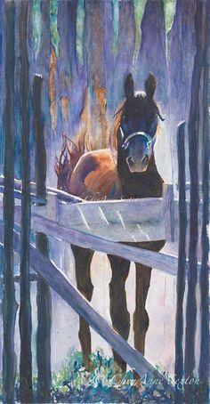 Taos Morgan Stallion WaterColour Fine Art giclee by CheyAnneSexton