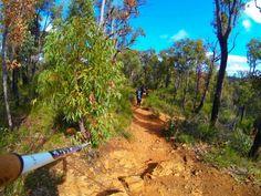 Bibbulmun track #nordicwalking