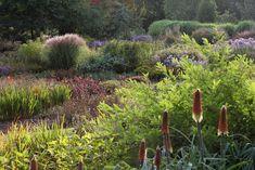 The Summer Garden at Bressingham