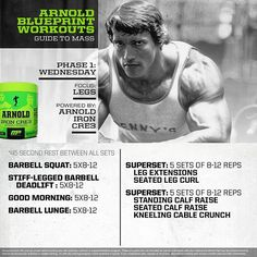 Arnold schwarzenegger blueprint trainer mass training overview httpsinstagramp9vgygkaqj malvernweather Images