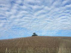 Magnificent view of Il Cedro today  #ilcedro #langhe #vineyard #piedmont #piemonte #barolo #winter #tree #corderodimontezemolo #oggi #nofilter #sky #clouds #dreaming #beautiful #bluesky #theoneandonly #today @corderodimontezemolowinery