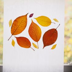 A throwback to when we captured some of our local fall foliage in wax paper - also, as it happens, a little hint at a newer project that we've been working on!