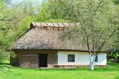 3978663-ancient-hut-with-a-straw-roof.jpg (800×530)