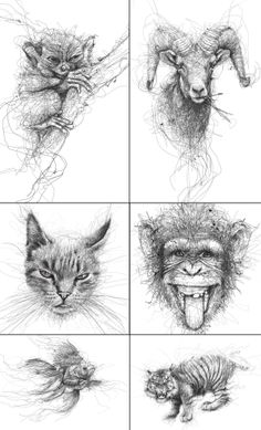 Vince Low - Animals series, illustrations, art