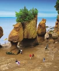 The Bay of Fundy (Canada) is renown for having the highest tides on the planet metres or 53 feet). People walking on the ocean floor at Hopewell Rocks in New Brunswick. Photo: New Brunswick Tourism and Parks Nova Scotia, Hopewell Rocks, Voyage Canada, East Coast Travel, Voyager Loin, Destinations, Parcs, Belleza Natural, Canada Travel