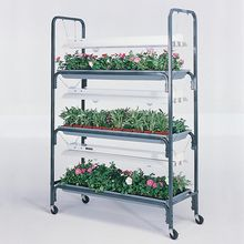 Plant-Mobile, Large, Jewel - 1200 from Carolina, comes with fluorescent and incandescent lights (no heat mats needed?)