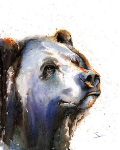Watercolor grizzly bear painting by artist Eric Sweet