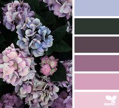 { color flora }   image via: @diana_lovring