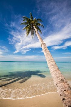 Koh Chang, Thailand Koh Chang, Beach Shoot, Palm Trees, Thailand, Places To Visit, Tropical, Explore, Water, Outdoor