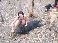 Another great hunt by another hot babe. Well done! Send us an email here to collect you photo prize! - http://boarhuntingaustralia.com/gallery-of-girls/