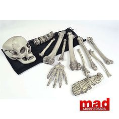 #Skeleton bag of bones-halloween #decorations/skull #lifesize horror prop scary,  View more on the LINK: http://www.zeppy.io/product/gb/2/271957328356/