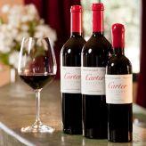 Carter Cellars Wines