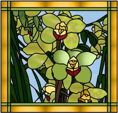 Orchidee-Manon Cayer, - Bing Immagini
