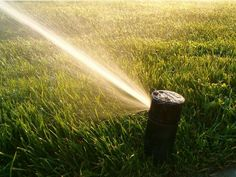 Winterize your sprinkler system!  If you need some landscaping done around your house or workplace, call Lawn Tigers Landscaping in Walled Lake, MI at (248) 669-1980 to schedule an appointment TODAY or visit our website www.lawntigers.net for more information!