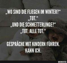 Wo sind die Fliegen im Winter?