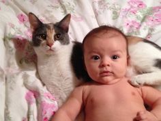 Mackenzie & Cupcake. Come follow me at http://www.pinterest.com/cattreehouse/
