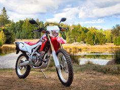 Honda | CRF250L  2015 | categorie : Adventure