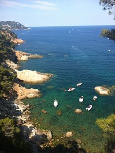 Costa Brava, Spain. It smelled of heat, sea and wild rosemary.