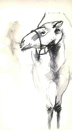 Ink Sketches on Behance