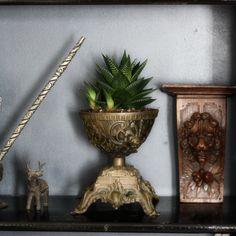 Flower pot.  interior inspiration flowerpot plant antique vintage