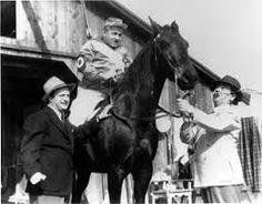 Stooge horse racing