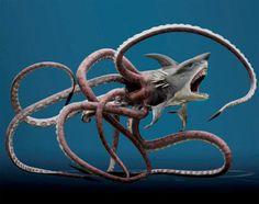 sharktopus - Google Search