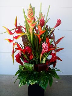 flower arrangements with tropical flowers Tropical Flowers, Tropical Flower Arrangements, Ikebana Flower Arrangement, Exotic Flowers, Tropical Plants, Red Flowers, Beautiful Flowers, Hawaii Flowers, Tropical Gardens