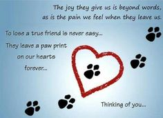 Send your thoughts to the one who lost their pet. Free online Pet Loss ecards on Pets Dog Poems, Dog Quotes, Animal Quotes, Animal Poems, Dog Sayings, Animal Cards, Qoutes, Pet Loss Grief, Loss Of Dog
